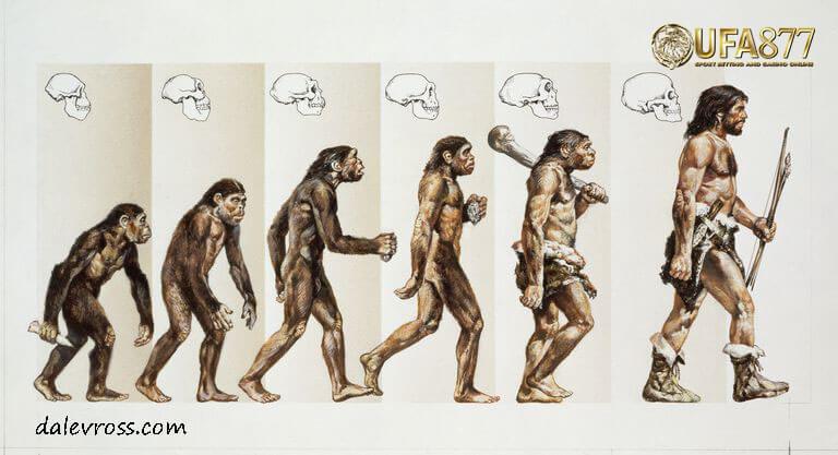 ทฤษฎีการวิวัฒนาการ