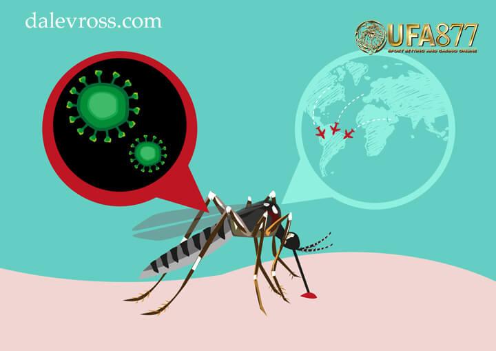มาดู ผลกระทบ และการแพร่กระจาย ของ ไวรัสซิกา